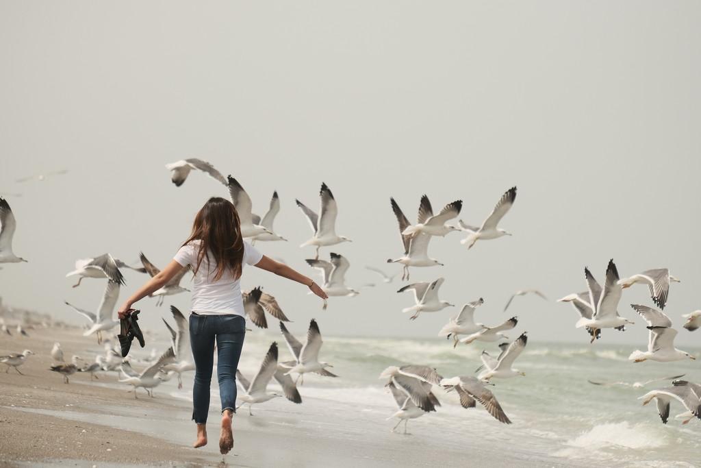 Learn to fly by stefanotrezzi