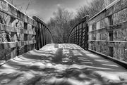 22nd Feb 2019 - The bridge