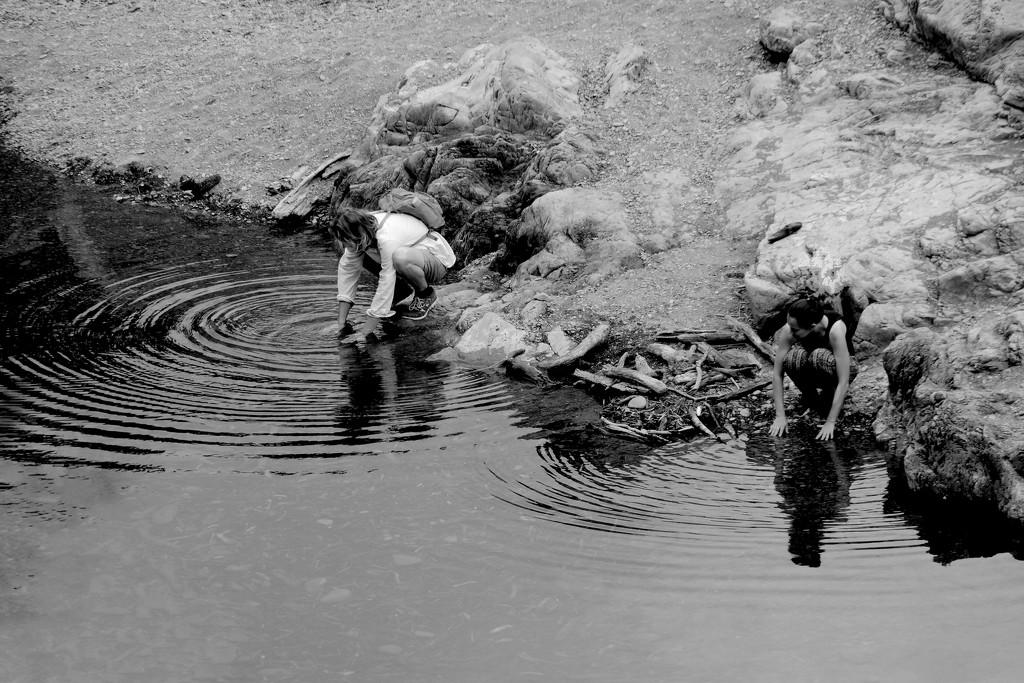 Leading to ripples by kiwinanna