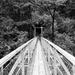 Leading to a swingbridge