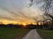 24th Feb 2019 - Evening walk.