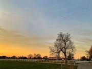 24th Feb 2019 - Sunset.