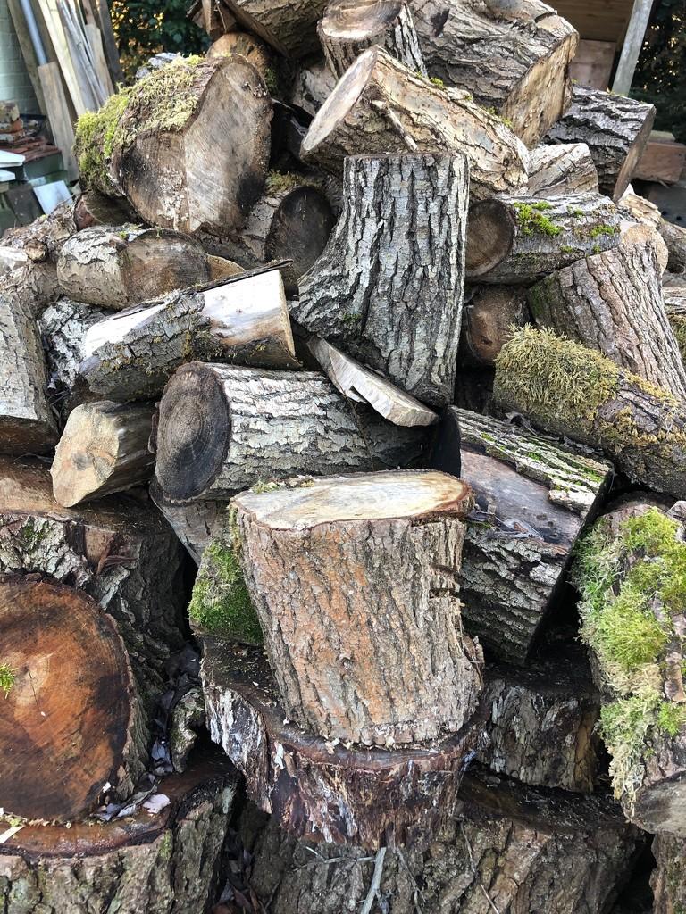 Wood pile by nicolaeastwood