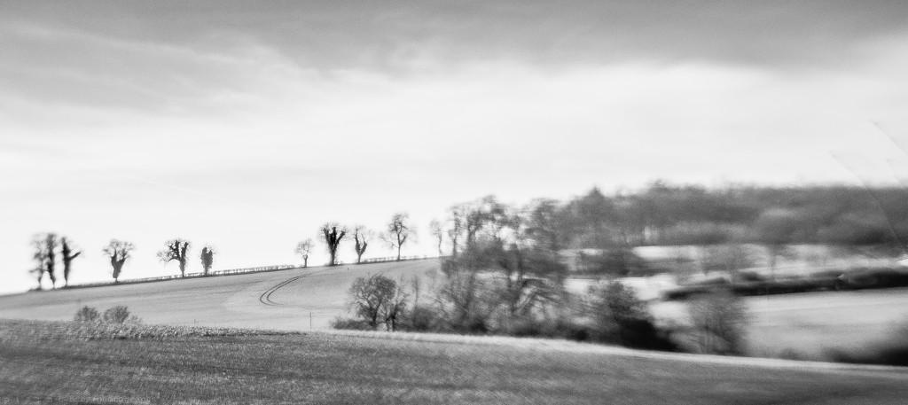 cotswold curve by pistache