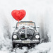 The Love Bug  by lesip