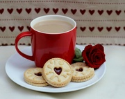 22nd Feb 2019 - Jammy Dodgers with Hearts.