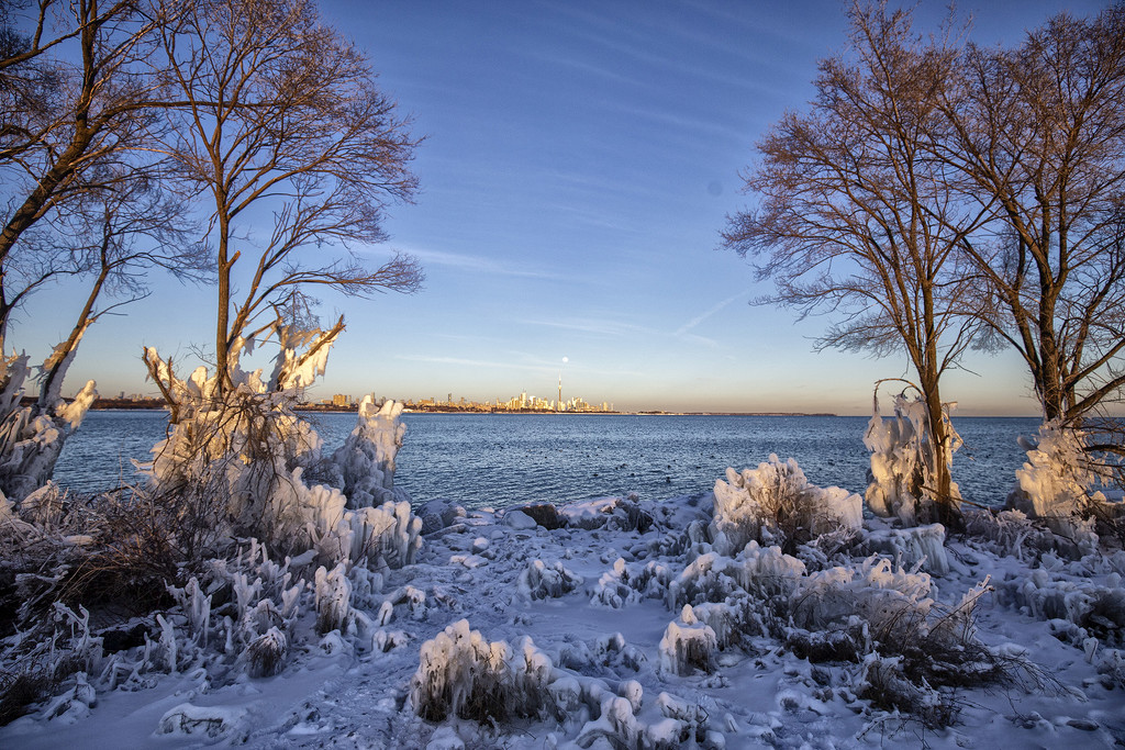 Toronto's icy shoreline by pdulis