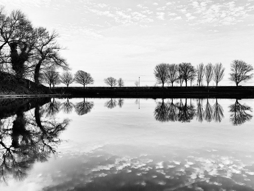 Reflective by m2016