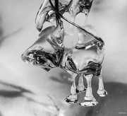 25th Feb 2019 - Ice sculpture