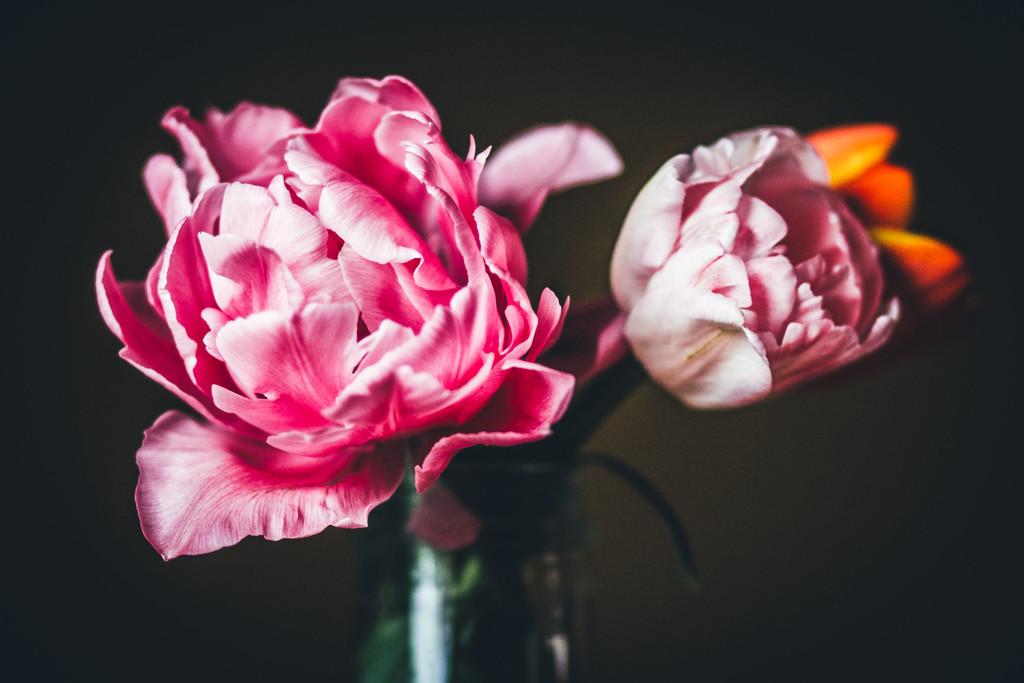 My daughter's flowers by mamazuzi