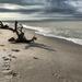 Bowman Beach by loweygrace