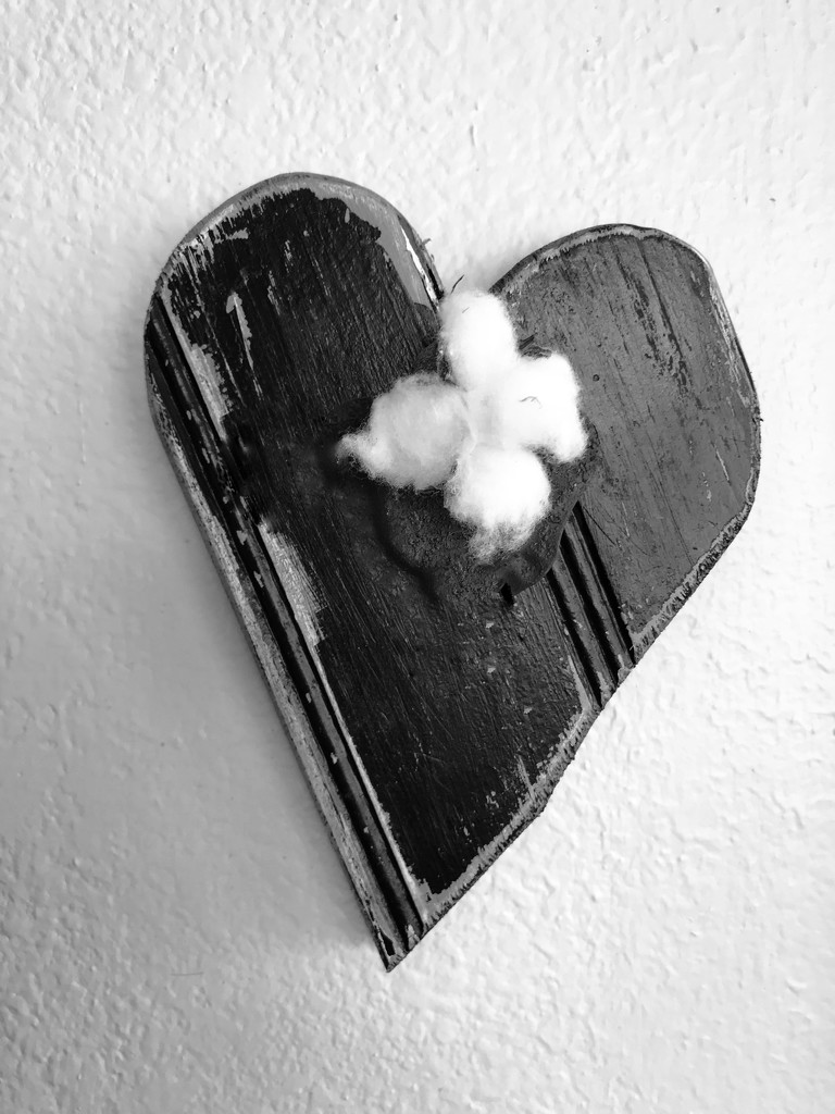 Jill's heart by louannwarren