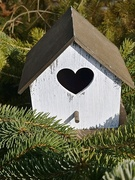 26th Feb 2019 - Bird House Heart
