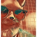 That Foxy Mr. Fantastic (II)