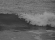 26th Feb 2019 - It comes and goes in waves