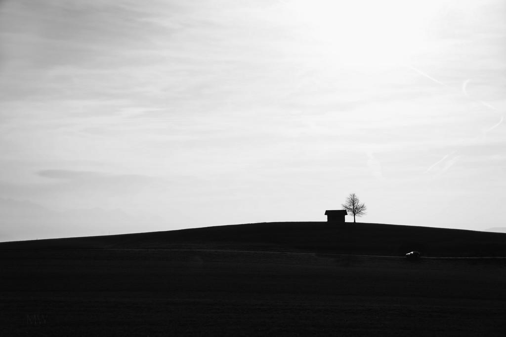 2019-02-27 / joker / minimalism by mona65