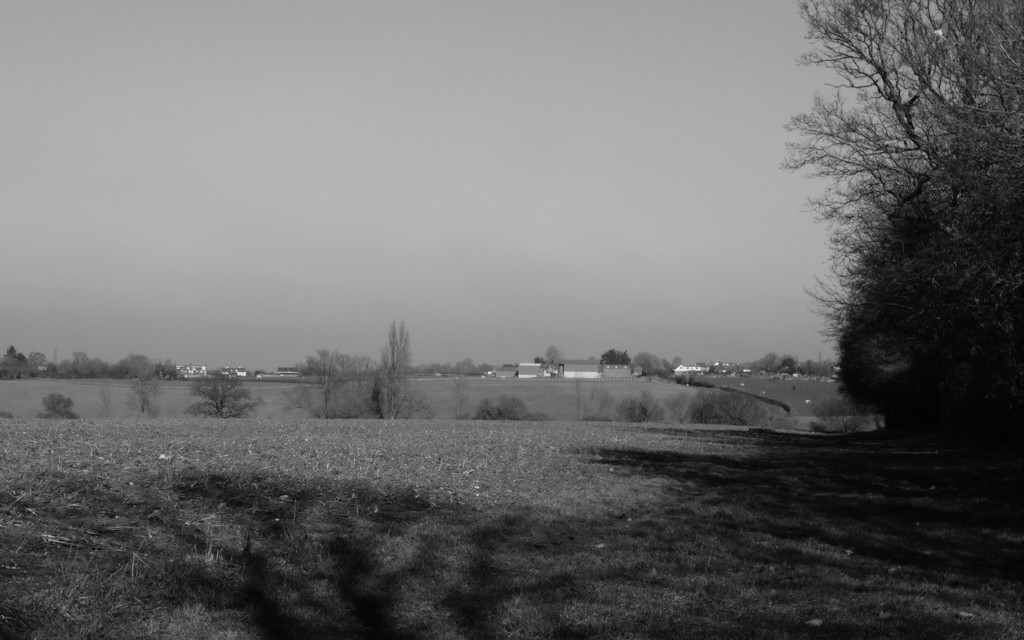 February Farm View by shannejw