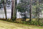28th Feb 2019 - Rainy Day on Hickory Lake