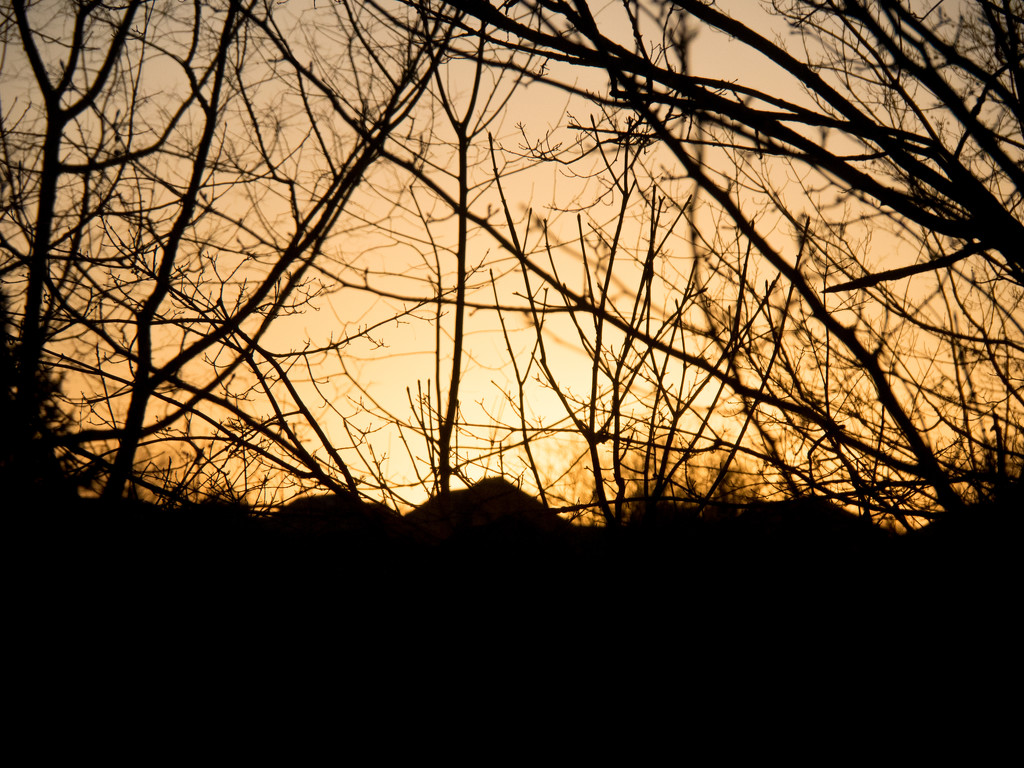 Yellow sky by christinemgrote
