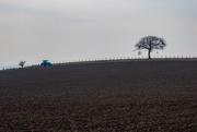 27th Feb 2019 - Ploughing