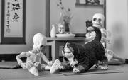 18th Feb 2019 - Skeletons At Rest
