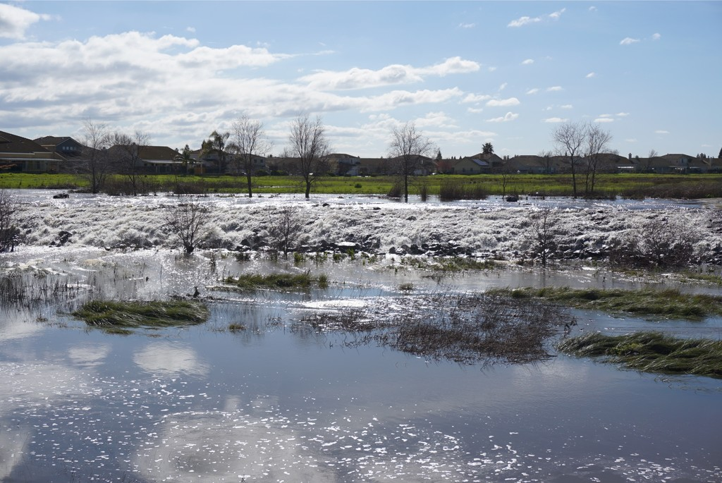 Laguna Creek by darsphotos