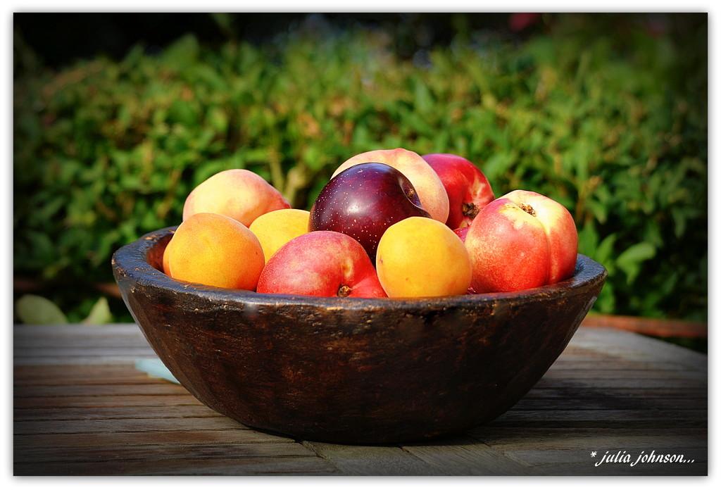Summer Stone Fruit.. by julzmaioro