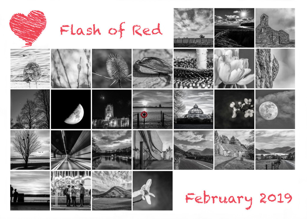 Flash of red complete by inthecloud5