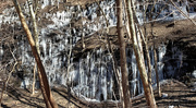 1st Mar 2019 - Icicles