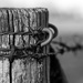 Fence post by leonbuys83