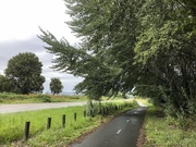 1st Mar 2019 - Streets of Canberra - Old Dairy Flat Road