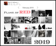 1st Mar 2019 - Flash of Red 2019