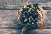 1st Mar 2019 - Asparagus for A