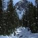 Winter wonderland on 365 Project