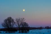 20th Feb 2019 - Moon Shot
