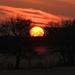 Kansas Sunset 3-1-19 by kareenking