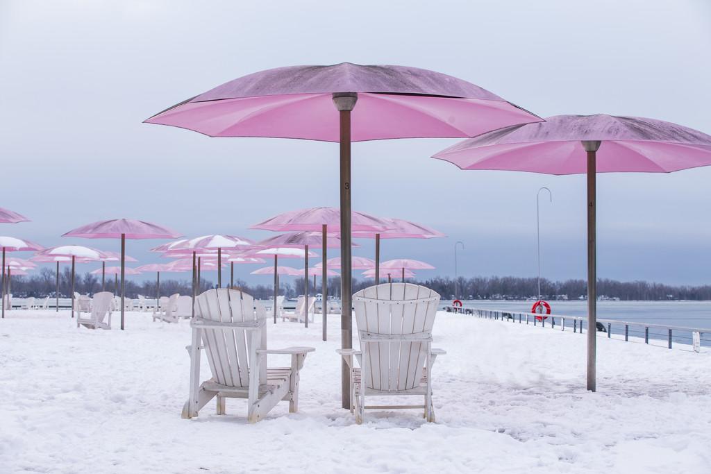Sugar Beach Toronto  by pdulis