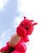 Sunday Pink 1