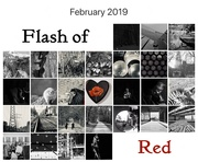 28th Feb 2019 - Flash of Red