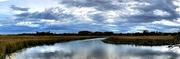 4th Mar 2019 - Old Towne Creek