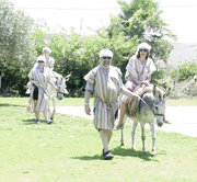 23rd Aug 2018 - Kfar Kedem and donkey rides