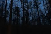 2nd Mar 2019 - Still dark