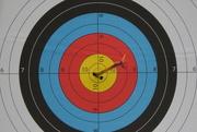 2nd Mar 2019 - Archeryh bullseye