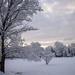 Snowy Sunrise by loweygrace