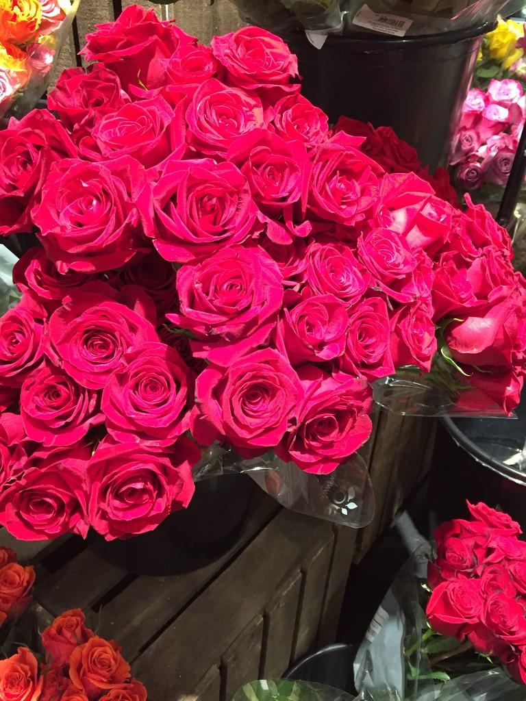 Roses at the supermarket  by kchuk