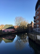 27th Feb 2019 - River Wensum