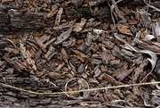 6th Mar 2019 - wood chips