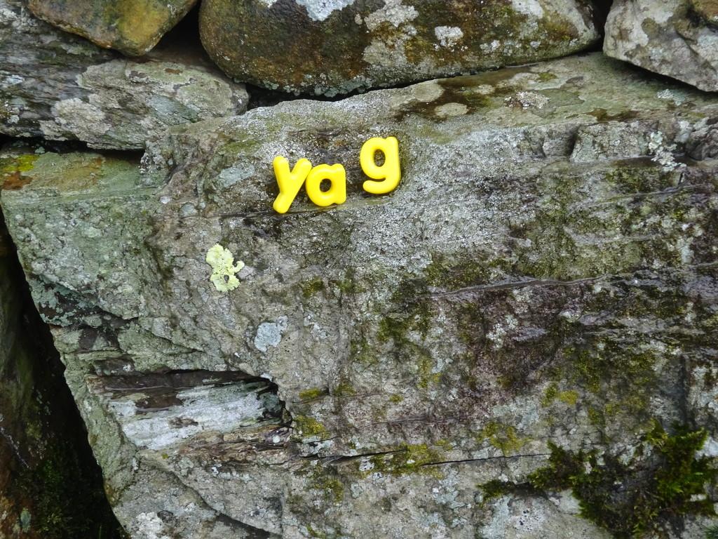 yag by anniesue