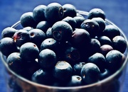 8th Mar 2019 - Blueberries