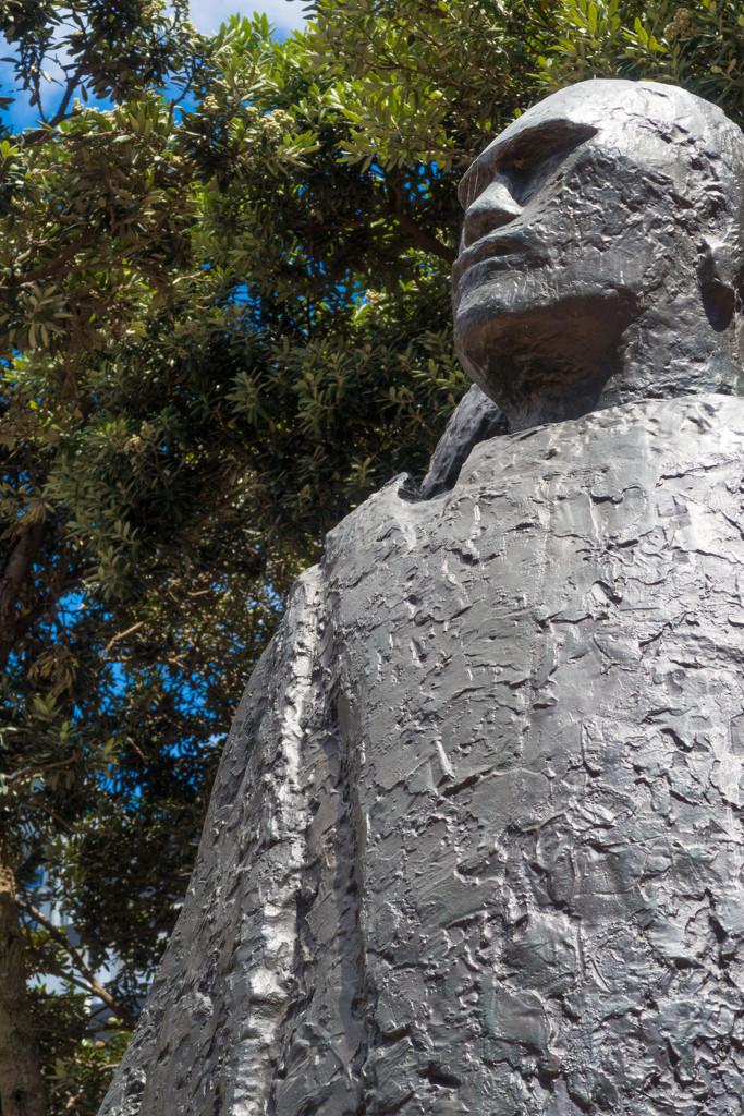 Maori chief  by creative_shots